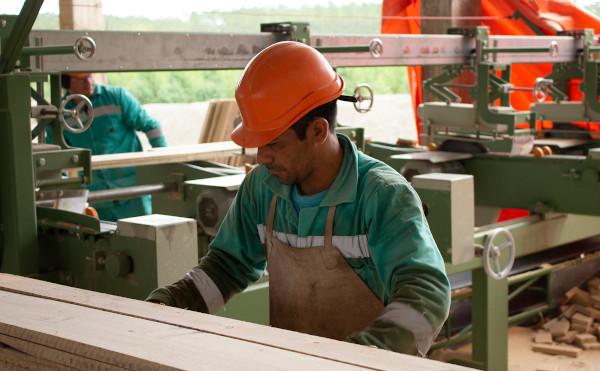 Weiterverarbeitung von Holz in Paraguay
