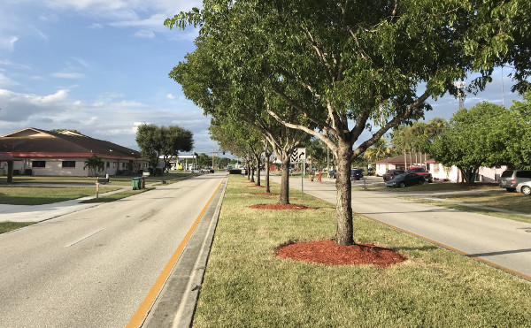 Cape Coral Street