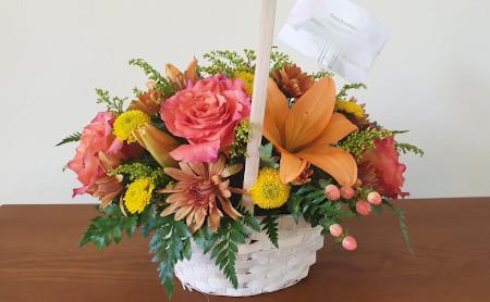 Blumen aus Cape Coral
