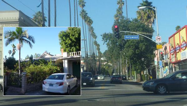 Hollywood Boulevard und Unterkunft